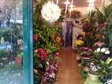 Centro Frutta Altopiano