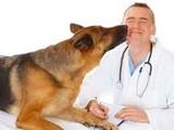 Aziende Sanitarie Padova - Dipartimento Di Prevenzione - Sanit〠Pubblica Veterinaria