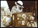 Controvento Viaggi